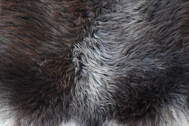 unikat lammfell schaffell leder fell teppich lambskin pelz. Black Bedroom Furniture Sets. Home Design Ideas